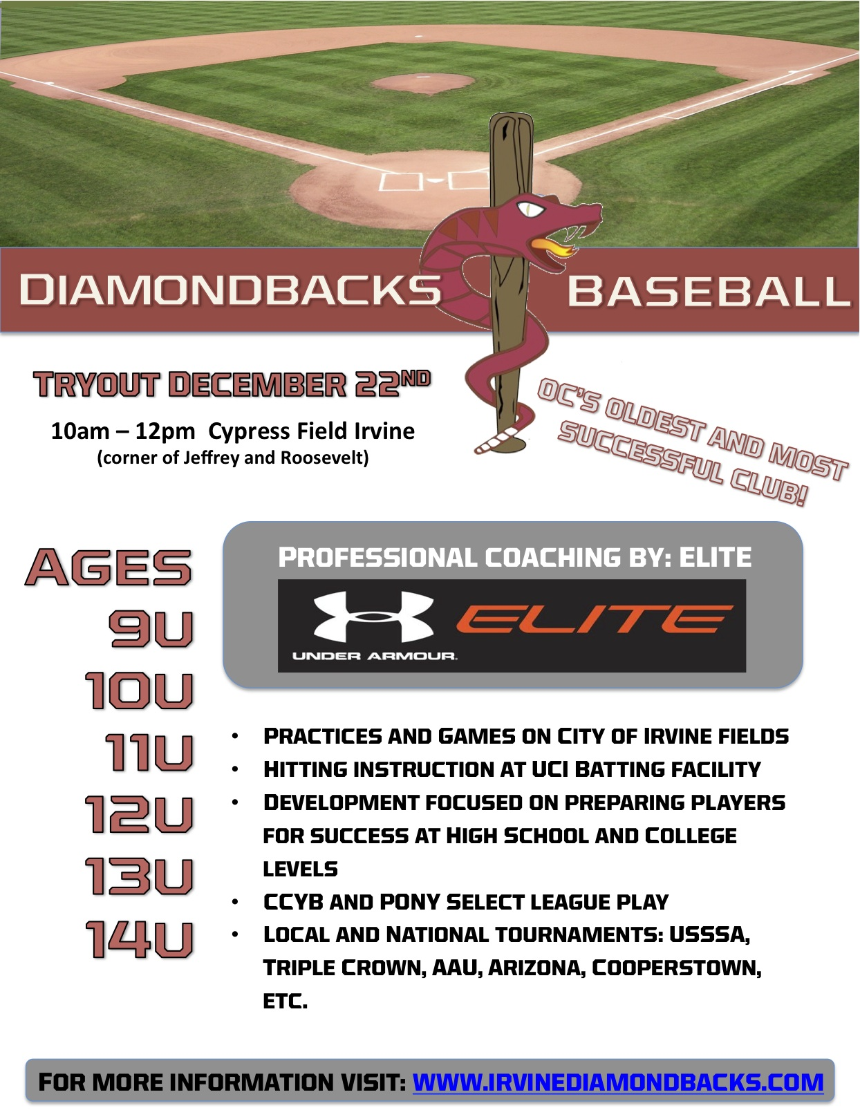 Diamondbacks Tryouts